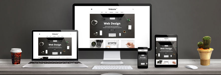 conception d'un site web professionnel